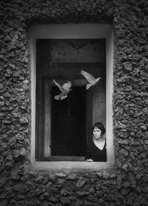 PORTRAITS - SIMONAPONCIA